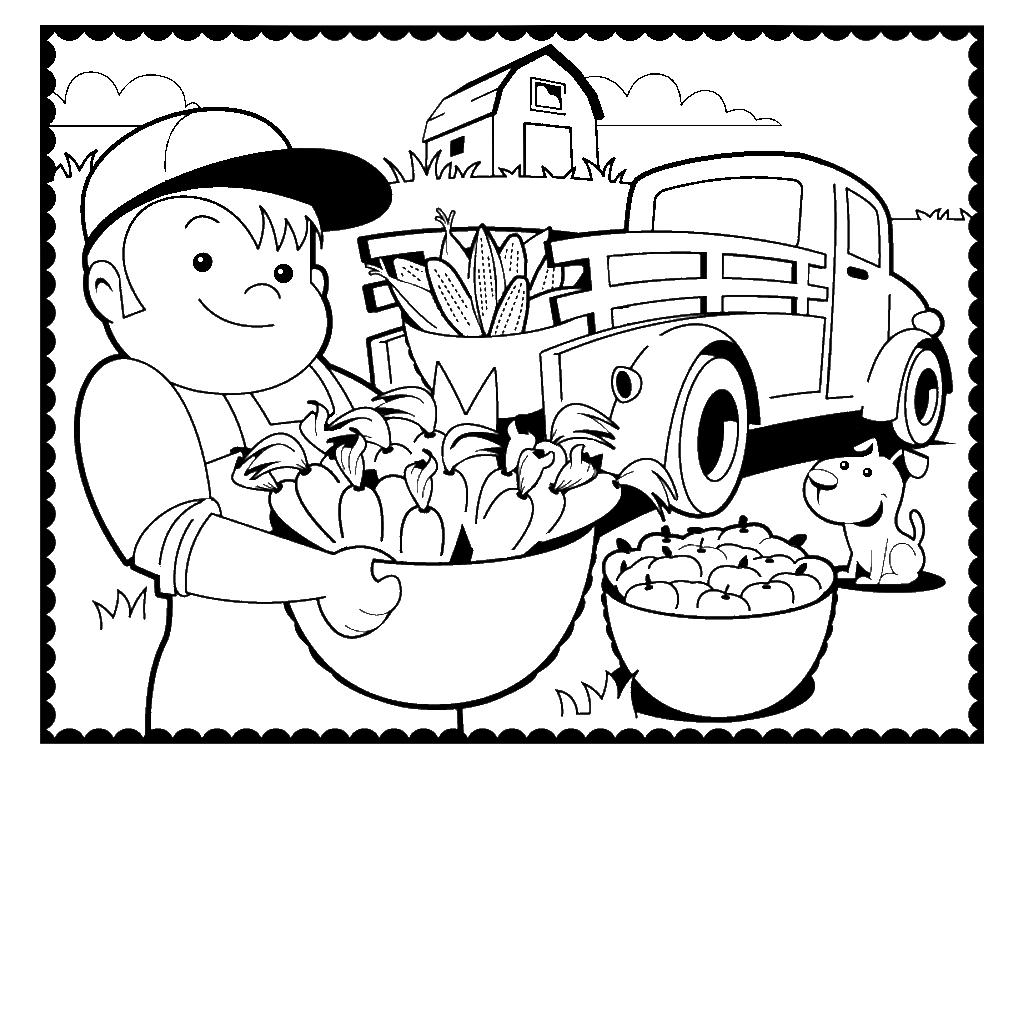 Agricultor recogiendo hortalizas