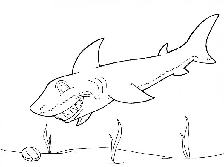 Tiburón muy sonriente para colorear