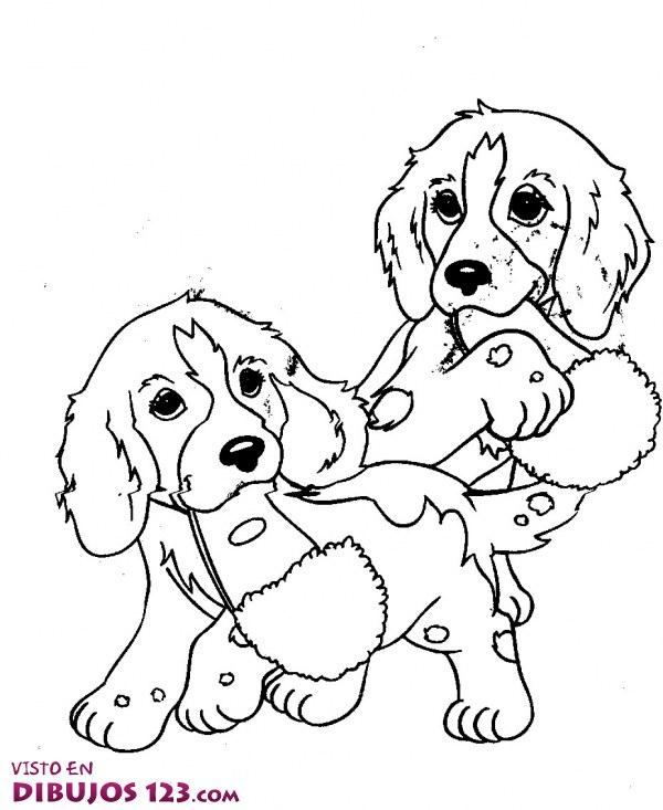 Cachorros traviesos