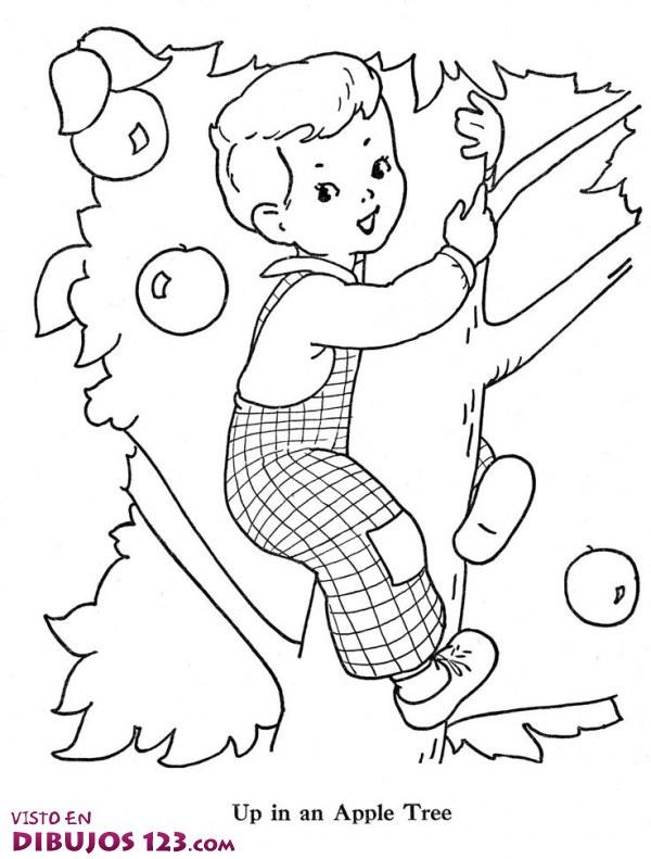 Escalando Por El árbol