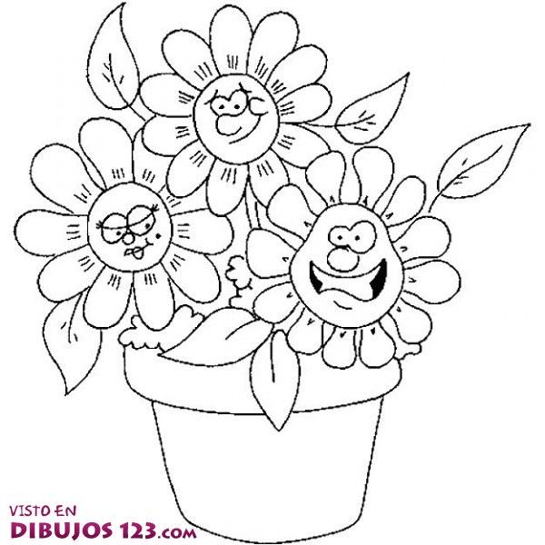 Tres flores que comparten maceta