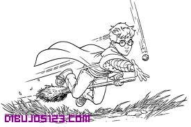 Harry Potter Y El Snitch