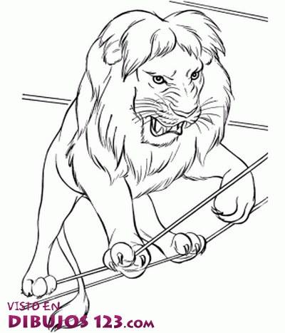 El fiero león sobre la cuerda