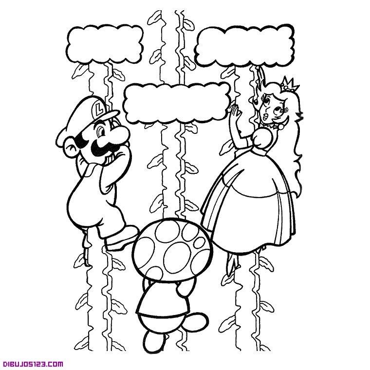 Mario Bross Luigi Y La Princesa Peach