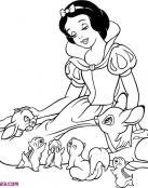 Animales del Bosque y Blancanieves