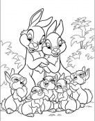 Familia de Tambor
