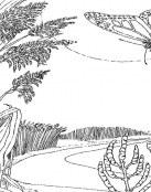 Paisaje de bosque y rio