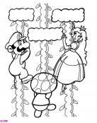 Luigi y la Princesa Peach escalando